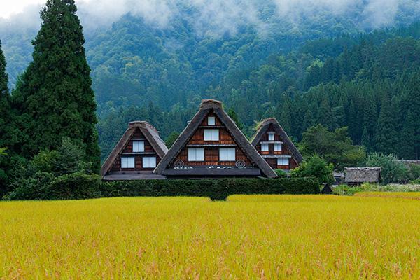 Casa tradicional de Gassho Zukuri, Shirakawago