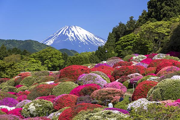 Monte Fuji, Hakone